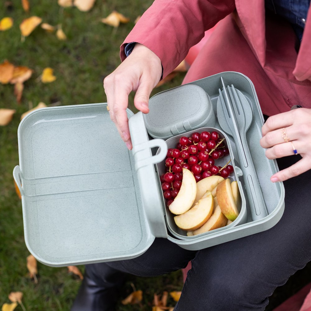 To go Lunchbox-Set inklusive Besteck-Set.