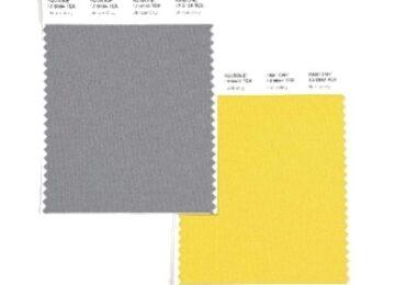 Pantone Farben des Jahres 2021 Gelb und Grau